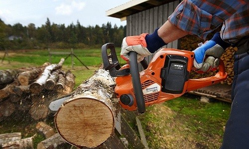 Заготовка дров при помощи пилы