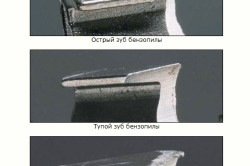 Формы зуба бензопилы