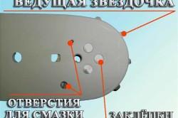 Схема местонахождения звездочки бензопилы