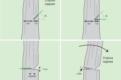 Техника валки дерева