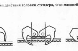 Схема проникновения скобы